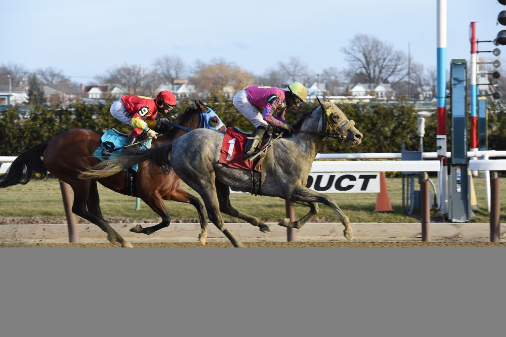 Ring Knocker's win on New Years Eve pushed her bankroll over the $200,000 mark. Photo by Adam Coglianese.