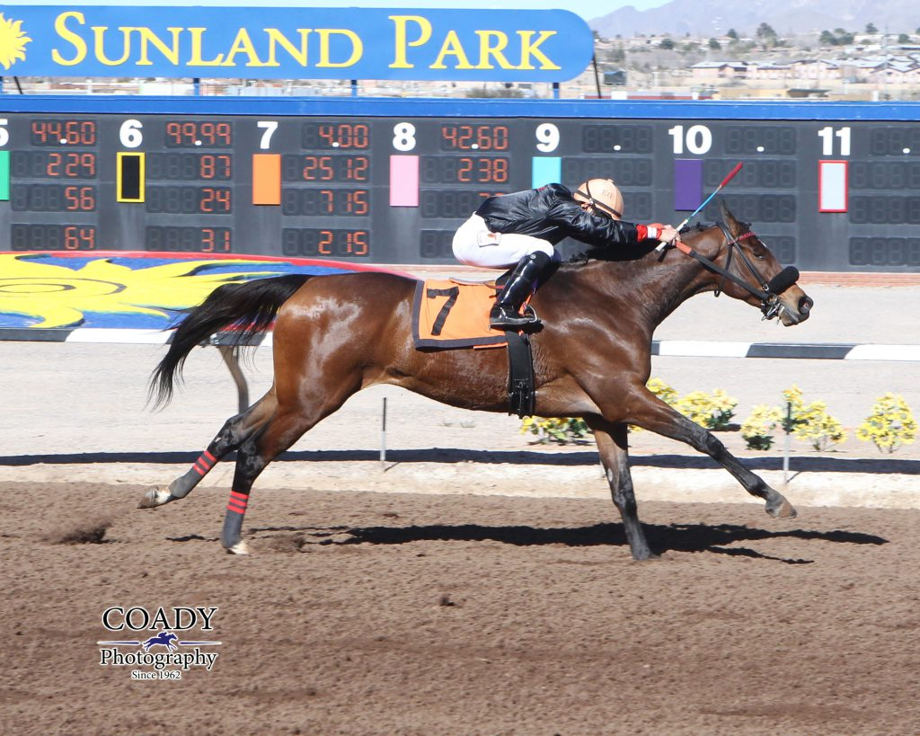 Chas's Legacy picked up his sixth lifetime win Fe. 5th at Sunland Park. Photo courtesy of Coady Photography.