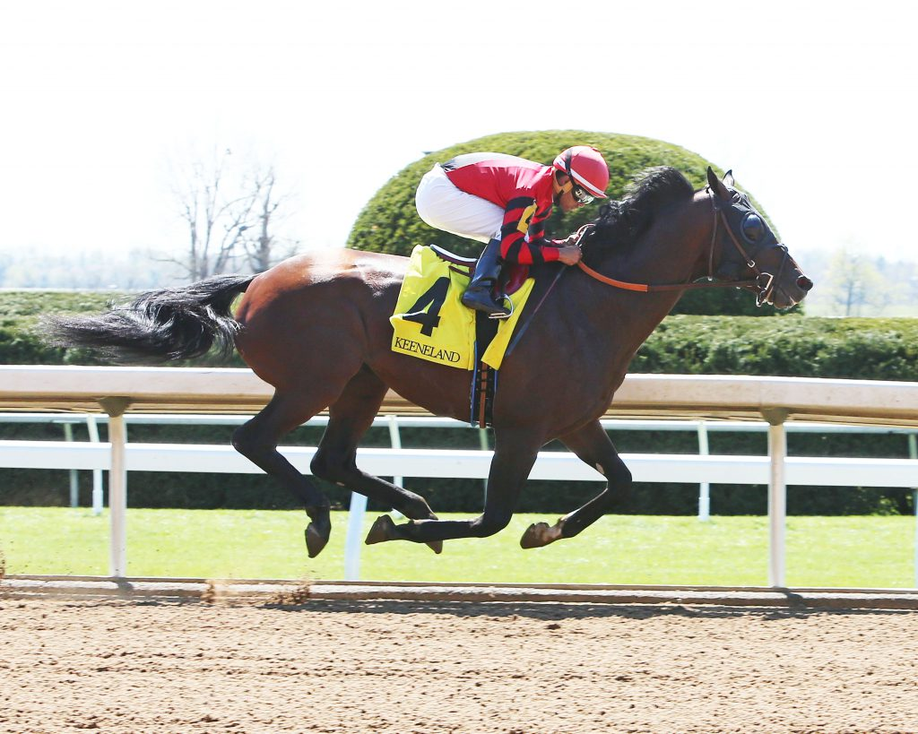 Honorable Duty is shown winning at Keeneland last year. Photo courtesy of Coady Photography.