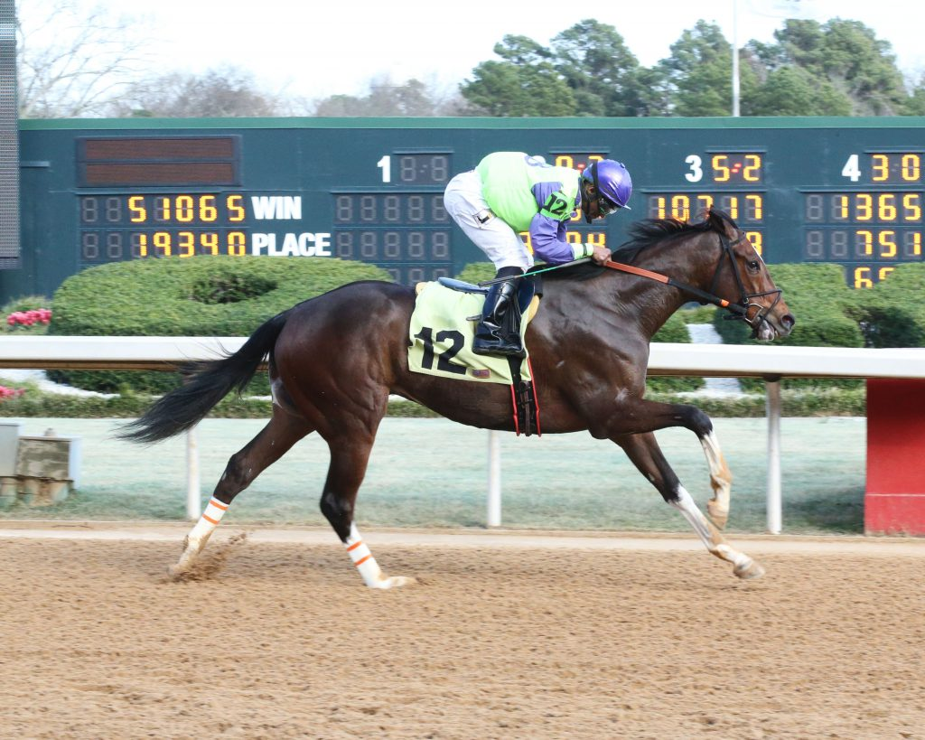 Kody With a K pushed his lifetime bankroll over the $100,000 mark with a win at Oaklawn Feb. 12th. Photo courtesy of Coady Photography.