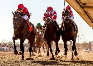 Honorable Duty, owned by Virginian David Ross, won the Grade 3 Mineshaft Handicap at Fair Grounds Feb. 25th. Picture from Hodges Photography.