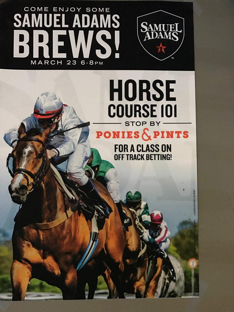 horse course 101