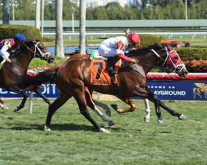 Kittens Cat is early favorite in a wide open field of 12 Saturday at Turfway Park. Photo by Adam Coglianese.