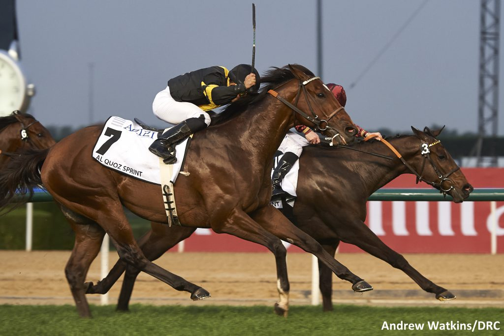 Long On Value finished a close second in the $1 Million Al Quoz Sprint March 25th in Dubai. Photo by Andrew Watkins.