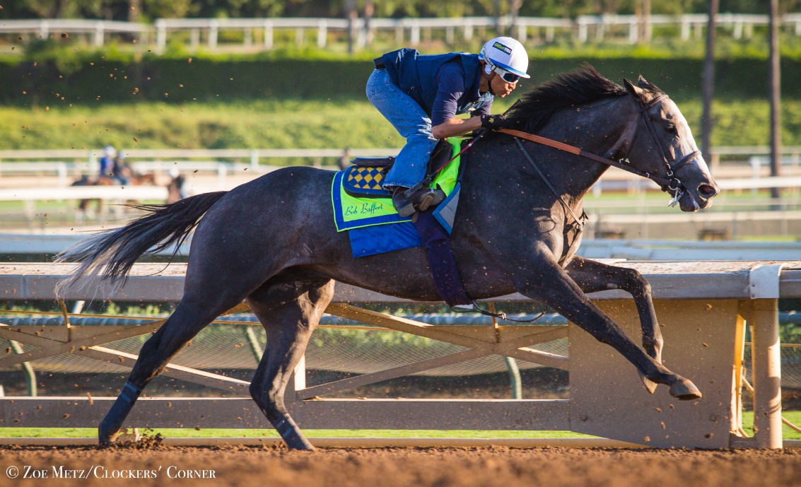 Arrogate Cruises In Most Recent Work For Breeders Cup