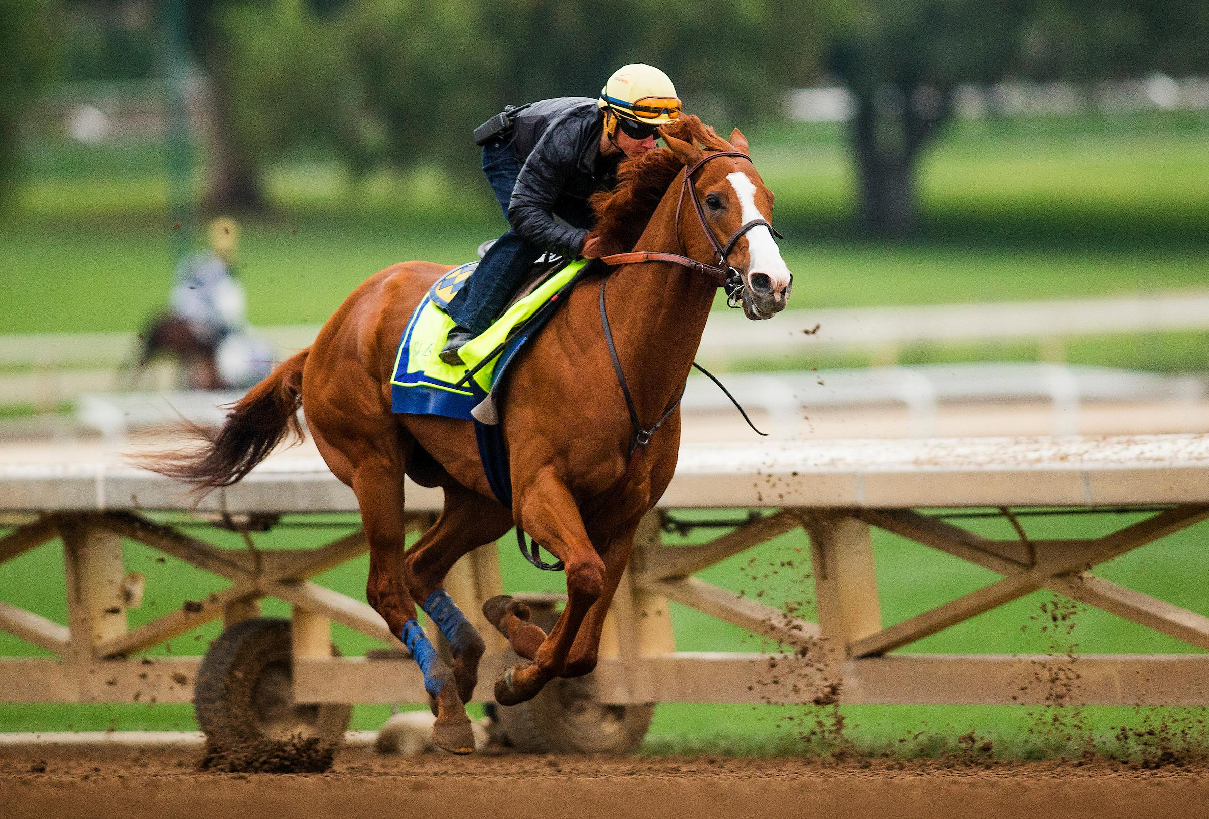 Justify Draws Post 7 In The Preakness Virginia Horse Racing
